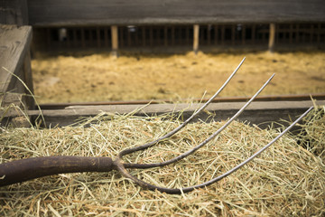Old Wooden Farm Pitchfork Tool Implement Barn Equipment