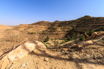 Scene of stone of the Sahara desert in the afternoon.
