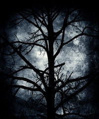 Scary tree. Grunge halloween wallpaper.