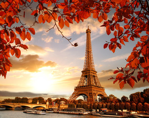 Ingelijste posters Eiffeltoren Eiffel Tower with autumn leaves in Paris, France