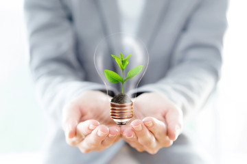 Businesswoman hold Light Bulb with soil and green plant sprout i