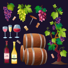 Wine set vector.