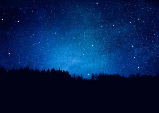 Nachthimmel mit Sternen und Wald-Silhouette - Textur