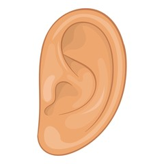 Ear icon. Cartoon illustration of ear vector icon for web design