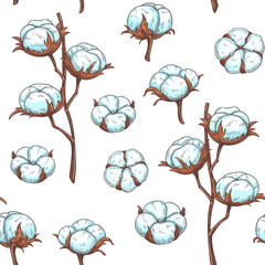 Cotton flowers seamless pattern.