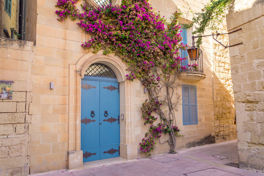 Beautiful facade with flowering plant growing up limestone wall
