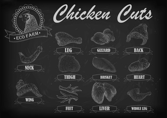 Chicken hen cutting meat scheme parts carcass brisket neck wing fillet heart leg liver. Vector horizontal closeup side view illustration sign info graphics white outline black chalkboard background
