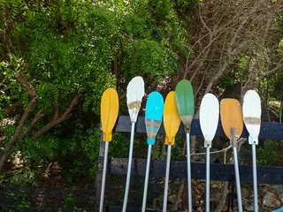 Colorful paddle board for rent on the beach