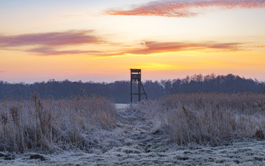 Hunting tower in the frosty morning
