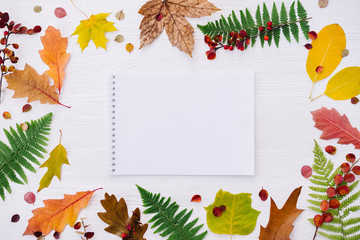 Autumn composition with notebook and colorful leaves on white wooden background. Top view, flat lay, copy space.