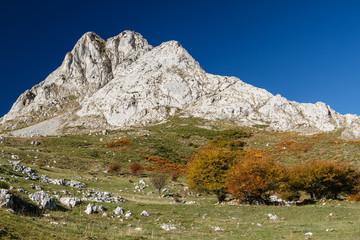Paisaje de montaña. Pico de Gilbo, Riaño, León.