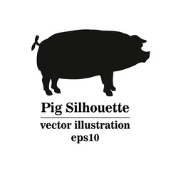 Vector silhouette of pig, hand drawing .