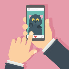 Cat on the screen. Hand holding mobile phone with funny black cat. Concept of internet videos, applications or social networks.