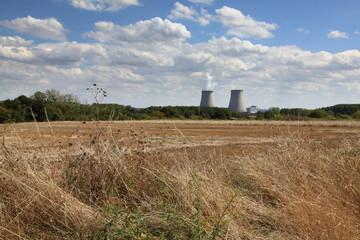 Le nucléaire et la nature sauvage: Belleville-sur-Loire.