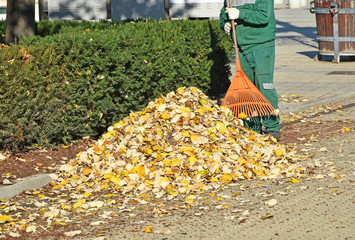 Street cleaner works in autumn