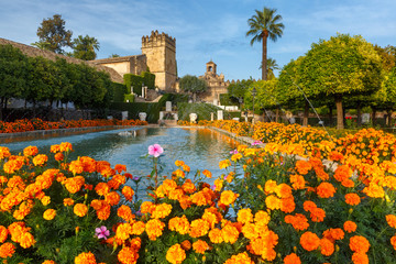 Fototapete - Blooming gardens and fountains of Alcazar de los Reyes Cristianos, royal palace of the cristian kings, in Cordoba, Andalusia, Spain