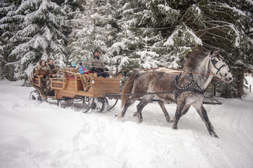 Family enjoying a ride in a horse-drawn sleigh in winter