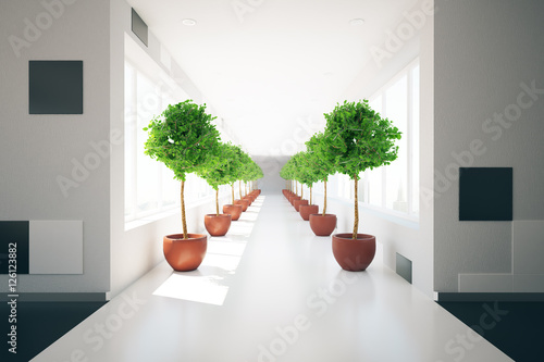 Corridor with decorative plants stock photo and royalty free images on pic 126123882 - Decoratie corridor ...