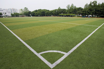 ground covered with turf