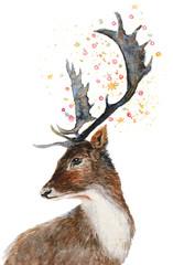 Watercolor deer portrait.