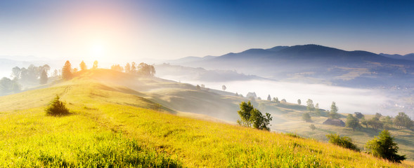 Wall Mural - Summer landscape in mountains