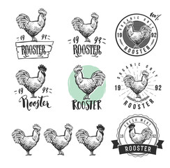 Rooster. Cock. Chicken product logotypes set. Hen meat and eggs vintage produce elements. Badges and design elements for the chicken manufacturing. Vector illustration.