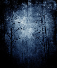 Abstract Forest With Birds, Beautiful Grunge Landscape, Vintage Scratched Texture