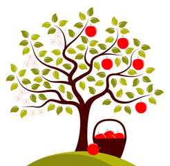 apple tree in two seasons