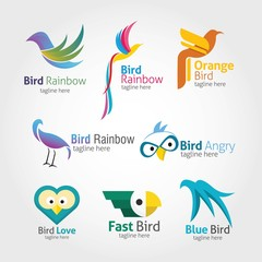 Bird Logo Design template. Vector Illustration