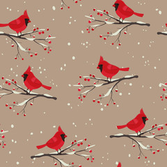 Cardinal bird beautiful winter seamless