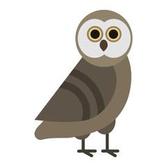 Owl wild bird cartoon vector