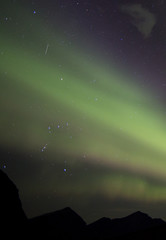 Orionid captured above orion during aurora show
