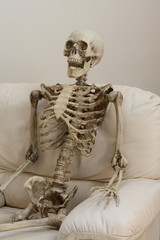 Skeleton sitting in white chair against white wall