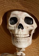 Close up of Skeleton skull with black eye sockets in wide brimmed hat