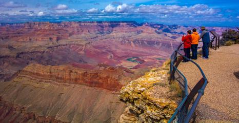 Grand Canyon Vista Wall mural