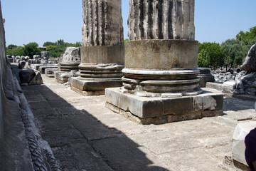 Stumps of massive stone columns of the Apollo temple  at Didyma,