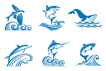 collection of fish and marine mammals on the waves