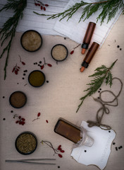 Alchemy Lab. dried herbs, salt, flasks, pipettes, recipes on the old canvas. top view