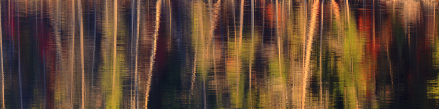 Panorama of fall color abstract