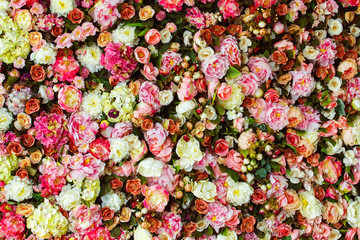 Closeup image of beautiful flowers wall background