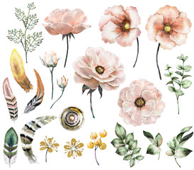 Set vintage watercolor elements of rose, collection garden, wild flowers, leaves, branches flowers, illustration isolated on white background, eucalyptus, bird  feathers, tribal, ethnic, indian, berry