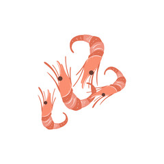 Shrimps Bright Color Isolated Illustration