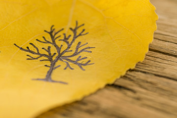 Yellow leaf with a picture of bare tree on the old wooden background with cracks