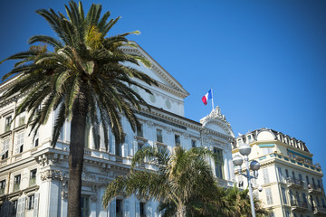 Nice opera house and palm trees on French Riviera
