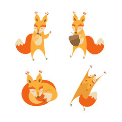 Cartoon Cute Squirrel Animal Set. Vector