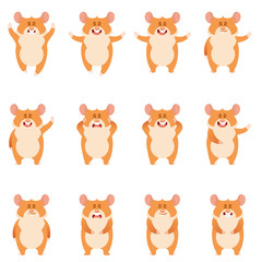 Set of flat hamster icons