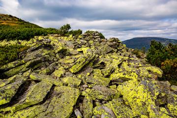 Wall Mural - Yellow stones in Carpathians