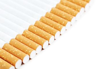 Tobacco cigarettes on a white background
