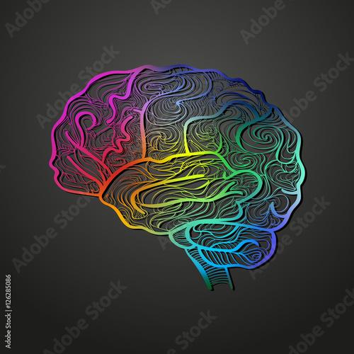 Farbiger Vektor: Skizze des menschlichen Gehirns. Ideal für ...