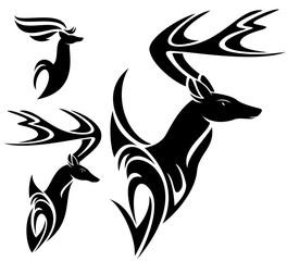 cornudo raven